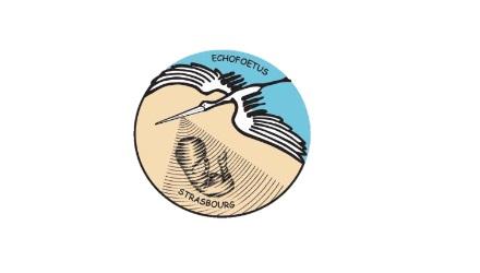Formation ECHOFOETUS « Les limites de l'échographie ».